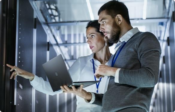IT consultants analysing servers